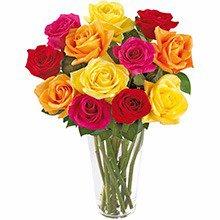 Luxuosas 12 Rosas Coloridas no Vaso