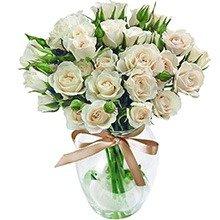 Contagiar de Rosas Brancas no Vaso