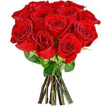12 Rosas Colombianas Vermelhas