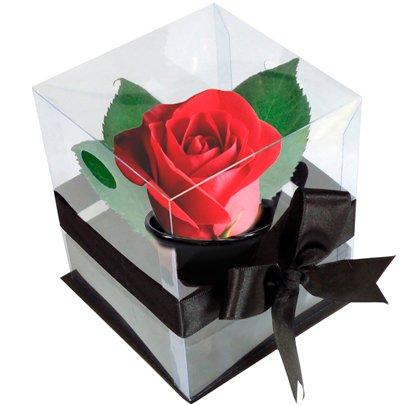 Rosê Vermelho