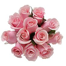Buquê Luxuosas 12 Rosas Cor de Rosa