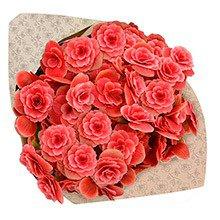 Buquê de Begônia Rose