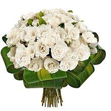 Reconquista de Rosas White