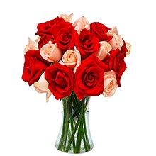 Opção do Amor Mesclado 20 Rosas