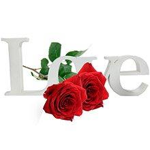 Letreiro Love & Rosas Importadas
