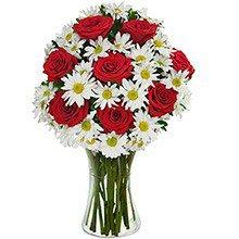 Luxuoso Mix de Margaridas & Rosas Vermelhas