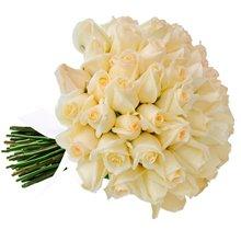 Buquê de 42 Rosas Brancas