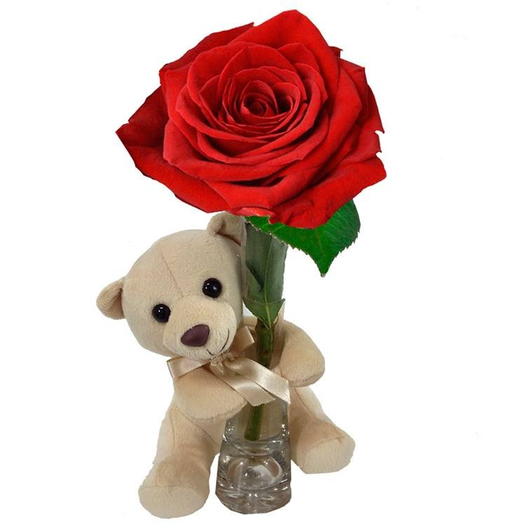 Agarradinho Red Flores E Pel Cia Flores E Presentes