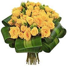 Reconquista de Rosas Yellow