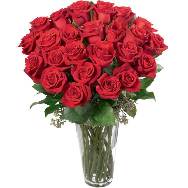 Soneto 36 Rosas Vermelhas no Vaso