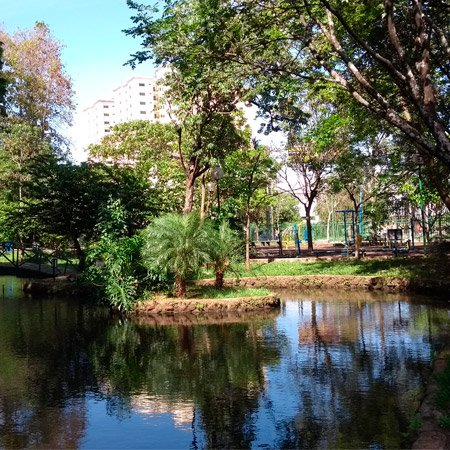 Parque Mata do Ipê