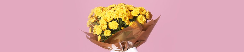 Flores Plantadas