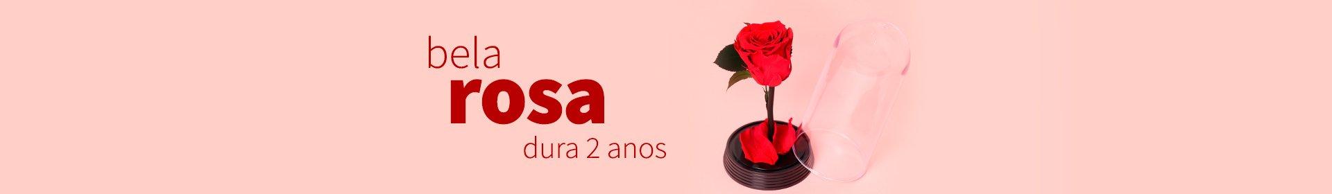 A Bela Rosa Encantada