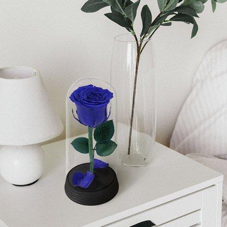 Rosa encantada azul na comoda