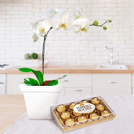 Vaso com orquídea branca e chocolate