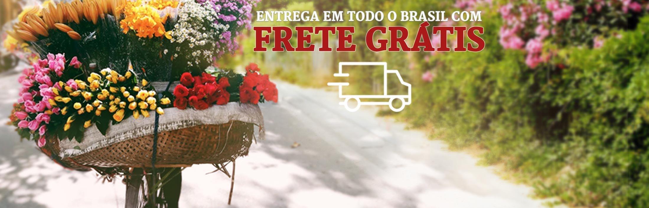 Entrega para Todo o Brasil