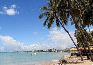 Floricultura no Estado de Alagoas
