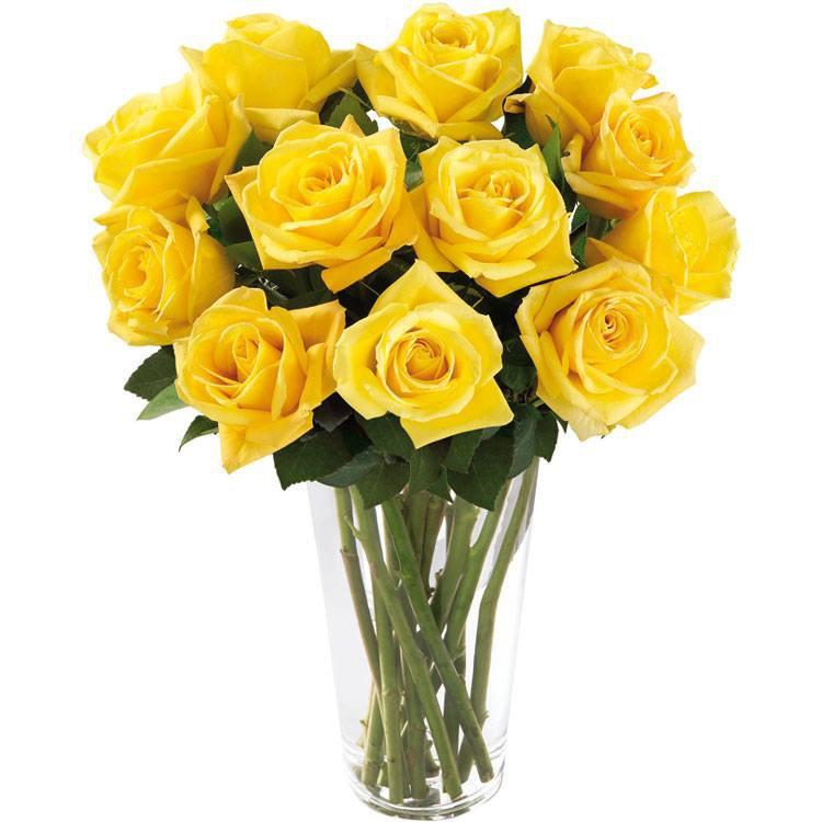 Brilhantes Rosas Amarelas