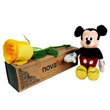 Exclusiva Rosa Amarela e Mickey Mouse