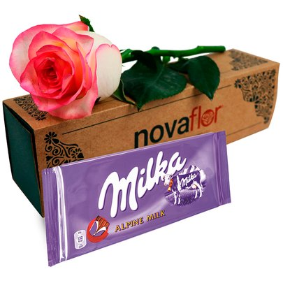 Exclusiva Rosa Cor de Rosa e Chocolate Milka